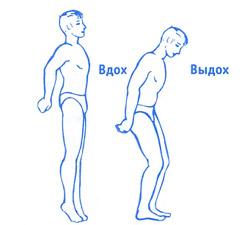 гимнастика против простатита